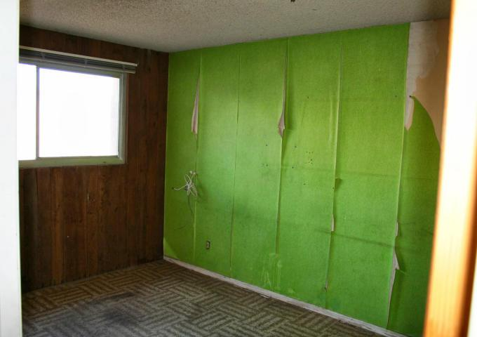 lime green peeling wallpaper